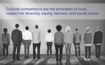 Cultural competence and equity in the Black American community